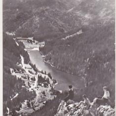 bnk cp Lacul Rosu - Vedere spre Suhardul Mic - circulata