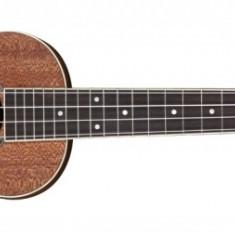 Fender Ukulele Mino'Aka - Concert