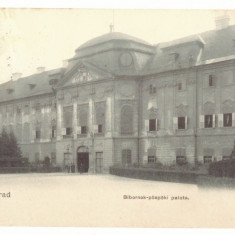 4683 - ORADEA, Romania - old postcard - used - 1907