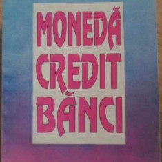 MONEDA CREDIT BANCI - CEZAR BASNO, NICOLAE DARDAC, CONSTANTIN FLORICEL