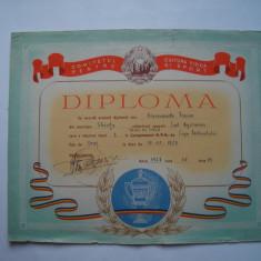Diploma Comitetul pentru Cultura Fizica si Sport, tenis de masa, 1957