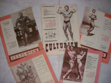 Reviste Culturism  lot-1991