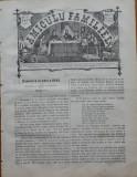 Ziarul Amiculu familiei , an 4 , nr. 30 , Gherla , 1880 , Iacob Negruzzi
