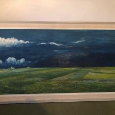 Tablou ,pictura veche olandeza,ulei pe panza peisaj