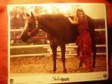 Fotografie- Film - Stolen hearts 1996 cu Sandra Bullock și Denis Leary , 35x28cm