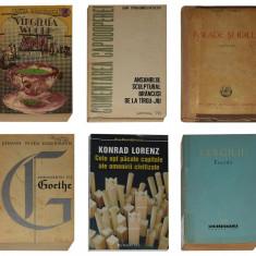 Carti beletristica II - Scriitori celebrii (6 buc)