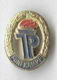 Insigna veche TINERETUL GERMAN - PIONIERI