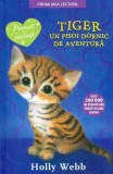 Tiger, un pisoi dornic de aventura | Holly Webb