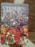 POVESTEA LUI LISEY-STEPHEN KING