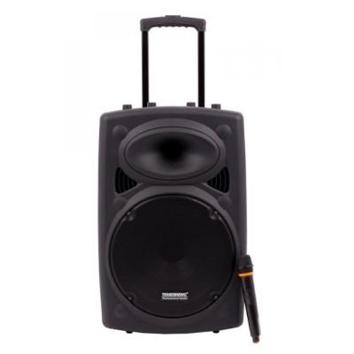 Boxa tip troler Temeisheng 015, 350 W RMS, acumulator, efect ecou, amplificator sunet foto
