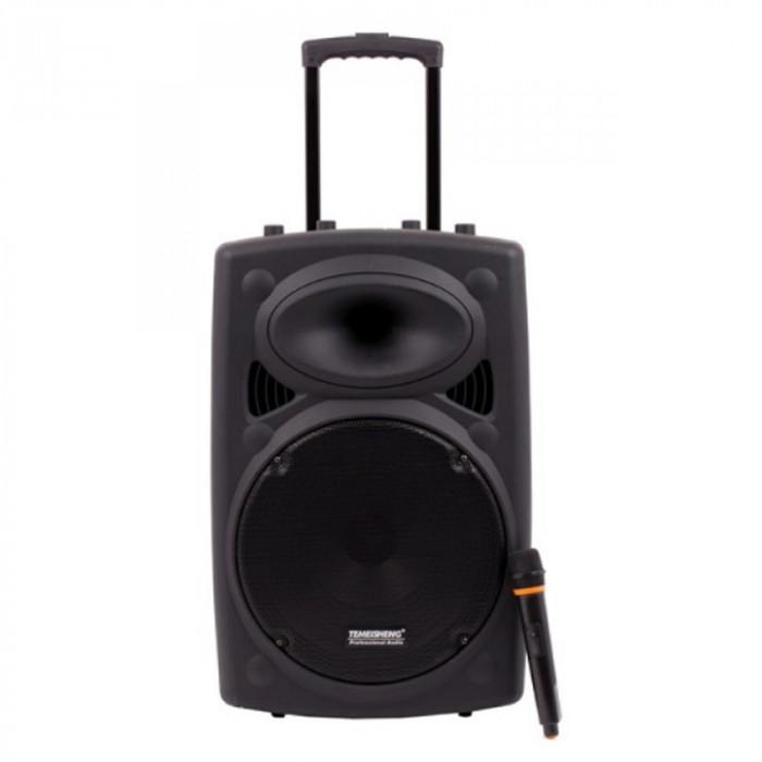Boxa tip troler Temeisheng 015, 350 W RMS, acumulator, efect ecou, amplificator sunet