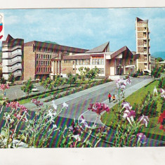 Bnk cp Baia Mare - Palatul politico-administrativ - circulata, Printata