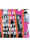 Mica istorie a unui secol mare - Monica Onojescu