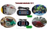 Termostat digital clocitoare rulota auto acvariu 12V