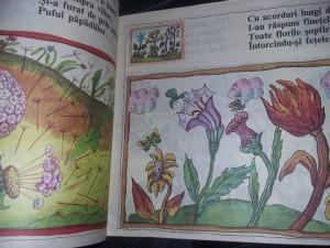 carte veche Povesti copii,RAPSODII DE TOAMNA,GEORGE TOPARCEANU,1988,ilustratii
