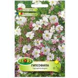 Seminte de floarea miresei mix Florian 0.5 grame