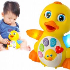 Ratusca multifunctionala interactiva iluminata pentru copii care canta si danseaza