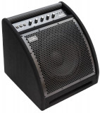 DS 50-Monitor Activ-Soundking