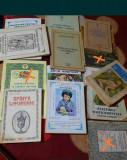 Lot 33 Carti religioase + Noul Testament + icoane + cruciulita