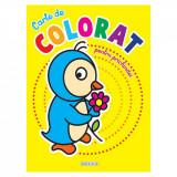 Carte de colorat pentru prichindei Girasol