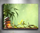 Tablou 3D Bambus 40x60 cm