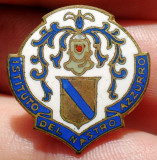 I.022 INSIGNA MILITARA ITALIA BUTONIERA REVER Istituto Nastro Azzurro
