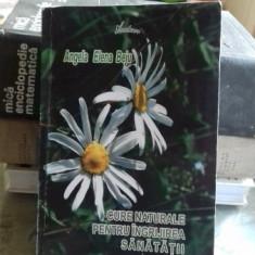 CURE NATURALE PENTRU INGRIJIREA SANATATII - ANGELA ELENA BEJU