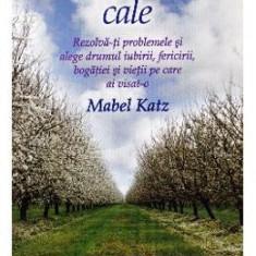 Cea mai usoara cale - Mabel Katz