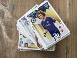Panini FIFA 365 2020 Adrenalyn XL Set 80 carduri Team Mates diferite