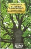 Cumpara ieftin Stejarul din Borzesti/Eusebiu Camilar