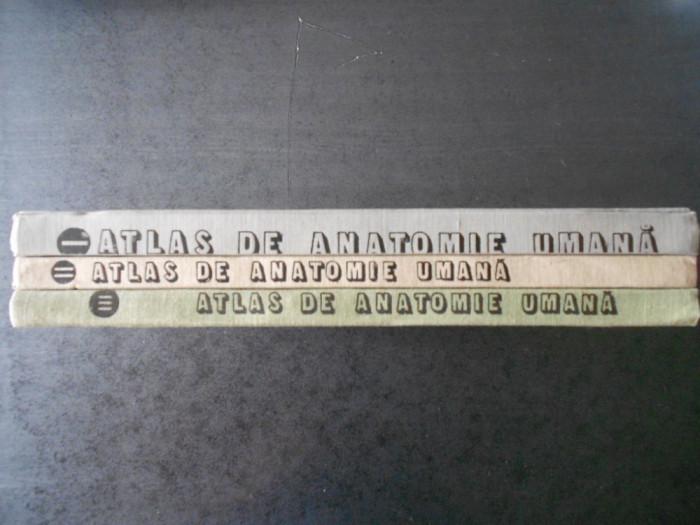 MIRCEA IFRIM - ATLAS DE ANATOMIE UMANA 3 volume