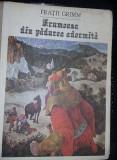 Carte veche Povesti copii,FRUMOASA DIN PADUREA ADORMITA,FRATII GRIMM,1991,T.GRAT