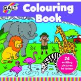 Marea carte de colorat, Galt
