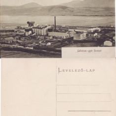 Zarnesti (Brasov ) - Fabrica de celuloza - rara, Necirculata, Printata