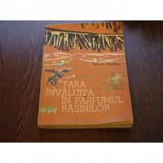 TARA INVALUITA IN PARFUMUL RASINILOR - ARKADY FIELDER