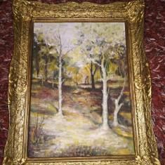 Tablou cu rama din lemn, pictura în ulei pe placaj, 43x53x5cm, peste 30 ani