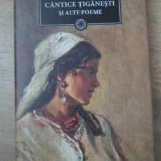 CANTECE TIGANESTI SI ALTE POEME - MIRON RADU PARASCHIVESCU