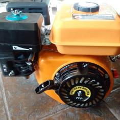 Motor 7 CP ax orizontal