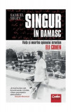 Singur în Damasc