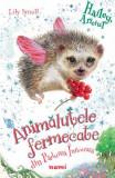 Hailey, ariciul. Seria Animalutele fermecate din Padurea Inrourata - Lily Small