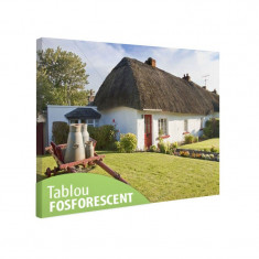 Tablou fosforescent Casa traditionala in Irlanda
