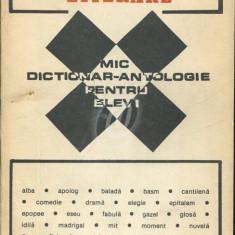Mic dictionar - Antologie pentru elevi (1993)
