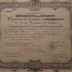 Diploma Universitatea din Bucuresti - Teologie - 1902 - per. Carol I