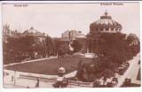 14 - Bucuresti - Ateneul Roman, carte postala, editura Socec