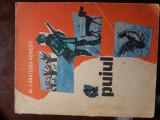cartea : puiu    bratescu-voinesti