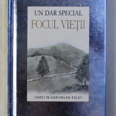 FOCUL VIETII - UN DAR SPECIAL , ilustratii de JULIETTE CLARKE , 2008