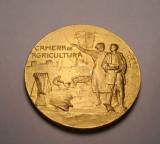 Medalie Perioada Regalista Expozitia Camerei de Agricultura Stema Regala D=60 mm
