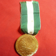 Medalie De Onoare Oficiala - Comunala Franta , bronz aurit ,d=4,2cm