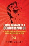 Lumea disparuta a comunismului. O istorie orala a vietii cotidiene in spatele cortinei de fier/Peter Molloy
