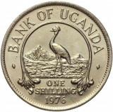 Cumpara ieftin Moneda exotica 1 SHILLING - UGANDA, anul 1976 *cod 5227 = UNC, Africa, Cupru-Nichel
